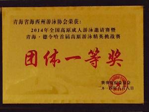 2014年全国高原成人游泳邀请赛暨青海德令哈首届高原游泳馆精英挑战赛团体一等奖